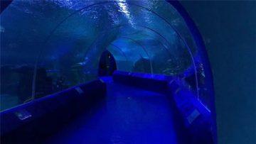 180 eller 90 graders akrylpaneler för akvarietunnel
