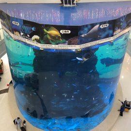 från 20 mm till 500 mm tjocka akrylplattor för modern stor fisk