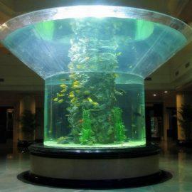 pmma glas akvarium halvcylinder perspex klar fisk tank