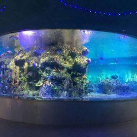 Fabriksförsörjning fiskskålar, runda tankar akvarier