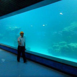 Cast UV UV-panel för akvarium / oceanarium