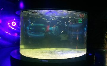 Akryl fisk tank