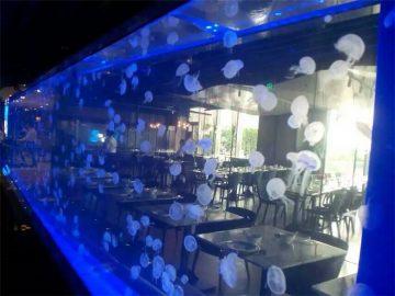 Akrylplåt Jellyfish tank