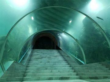 Akryl tunnel akvarium projektpris