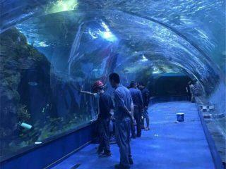 Akryl tunnel oceanarium projekt i offentliga akvarier