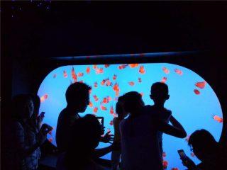 Skräddarsydda olika storleksformar sort Jellyfish Tank