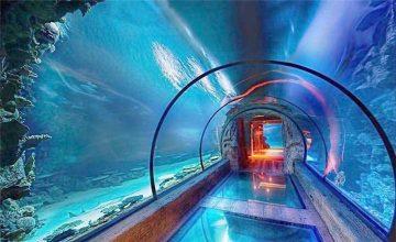 Modernt design akryl akvarium lång tunnel