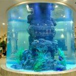 kristall fisk tank