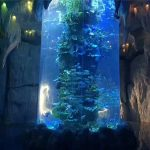 genomskinliga akrylplattor för stora akvarium, akvarium